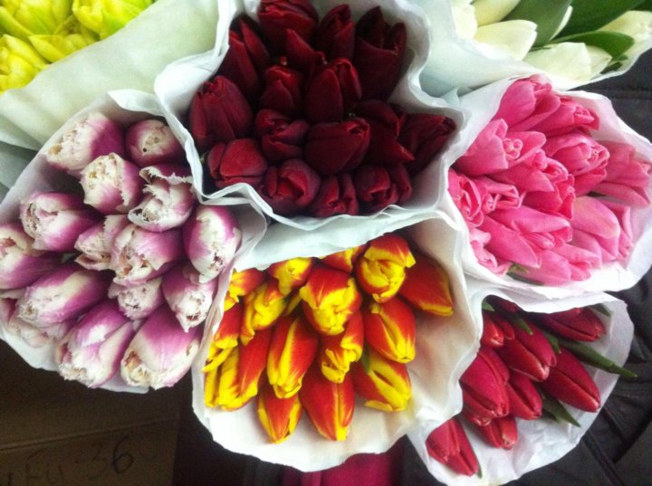 Где купить цветы оптом к 8 марта украина