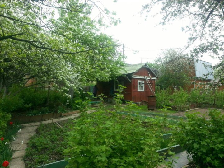 сады елизавет с пропиской и фото портфели непременный