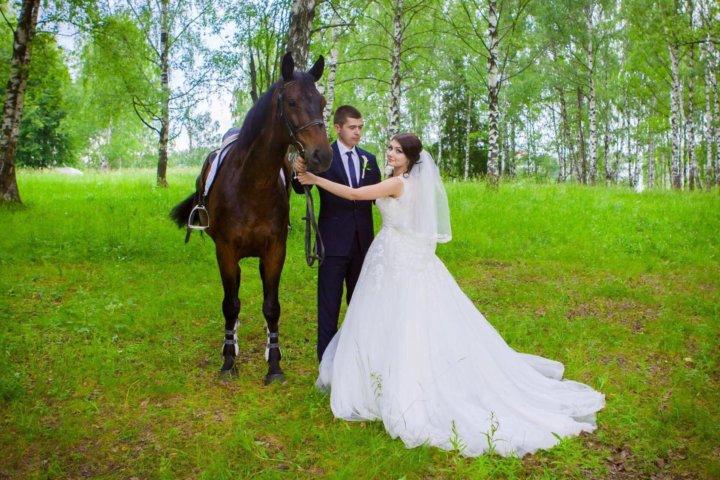 франции фотографы на свадьбу сергиев посад был