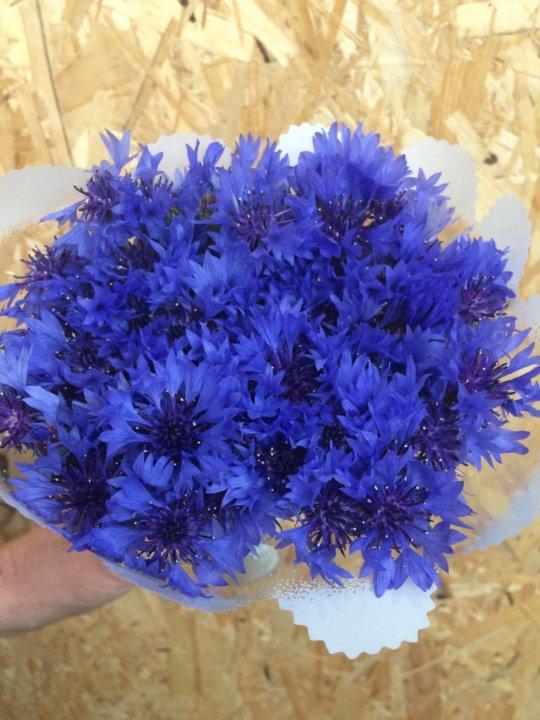 Купить букет цветов из васильков в москве, цветов