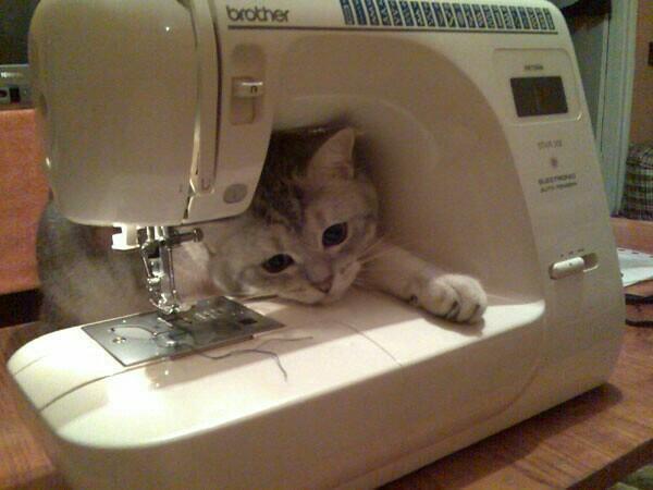 Прикольные картинки с швейной машинкой