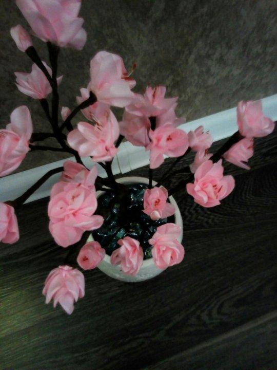 Фото цветы сакуры лентами