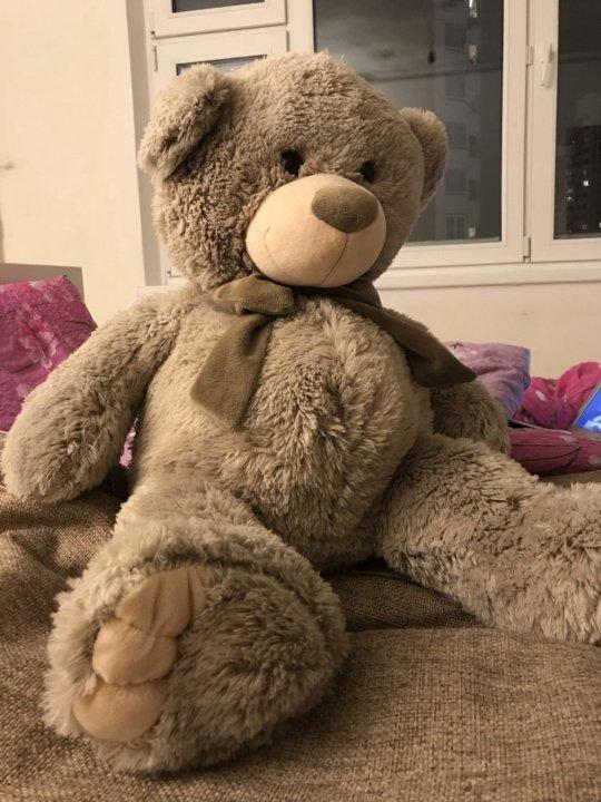 большой медведь мягкая игрушка купить