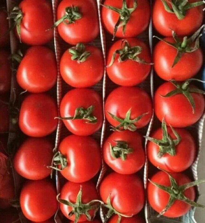 помидоры бакинские фото используем только передовое