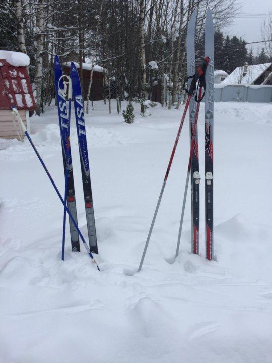 Беговые лыжи новые – купить в Санкт-Петербурге, цена 3 000 руб ... 26209ed8e2a