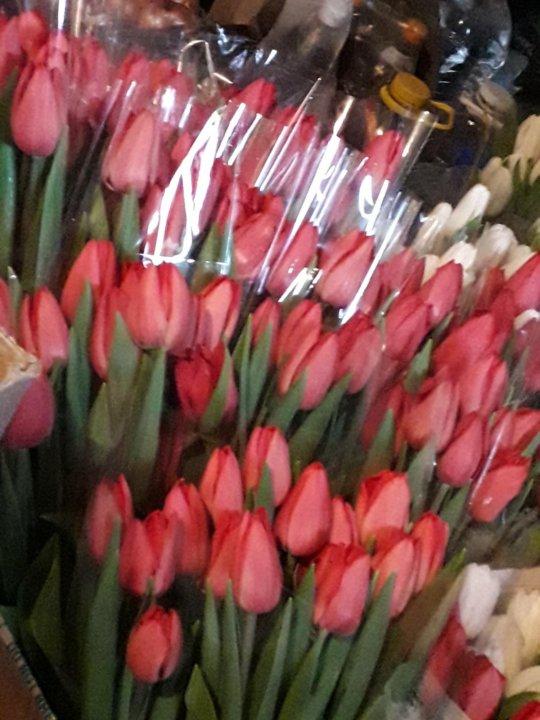 Свадебные магазины, цветы тюльпаны днепропетровск оптом астана