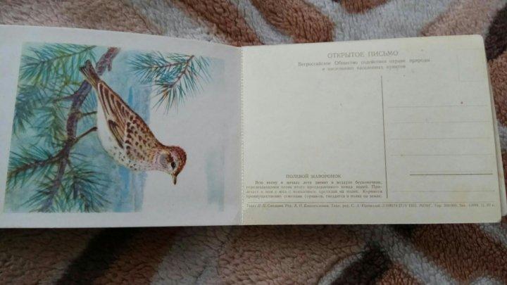 Отрывные открытки производство, прикольные картинки хорошего
