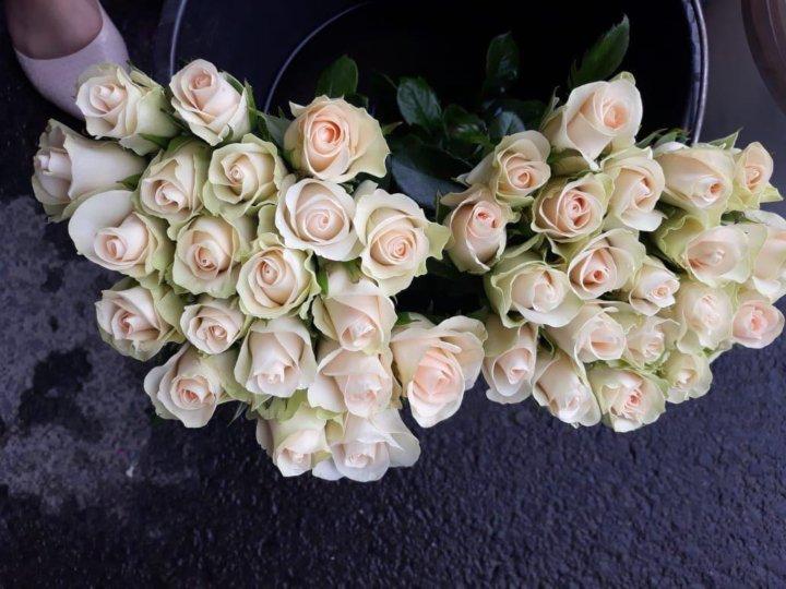 Ростов цветы оптом — photo 12