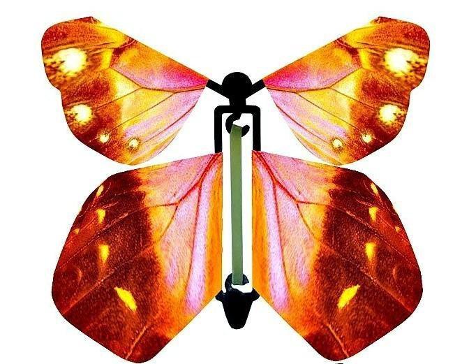 Свадебную, бабочки летающие в открытку
