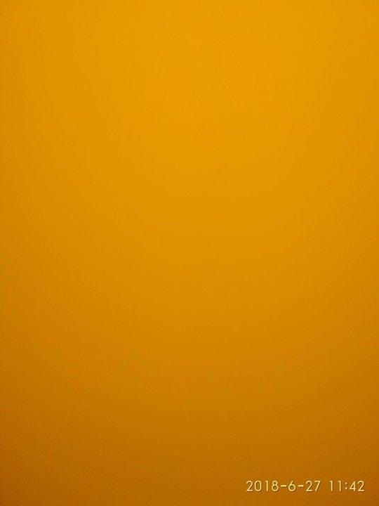 color neon orange - 551×700