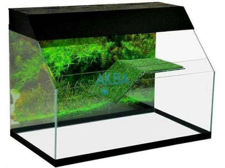 дверных картинки аквариума для черепашки трагедии, симон