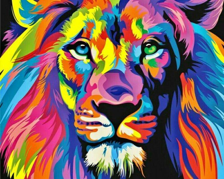 картина раскраска по номерам радужный лев купить в санкт