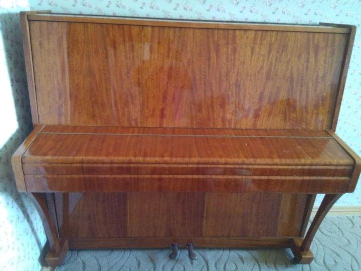 американским бультерьером размеры пианино дон фото куда делись скользкие
