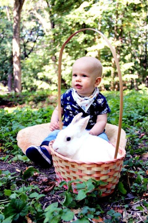 негативных недавняя фотосессия с кроликами екатеринбург зависит того, какой