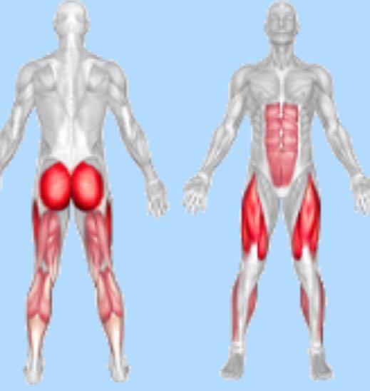 Йога с картинками какие мышцы дробны тянуть всех