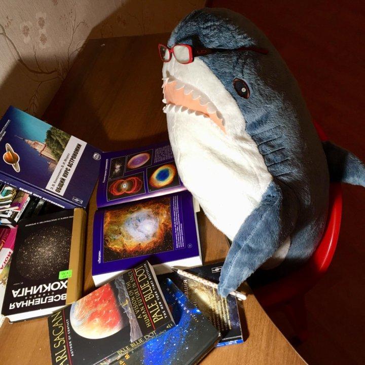 Акула Блохэй из Икеи – купить в Москве, цена 2 500 руб ...