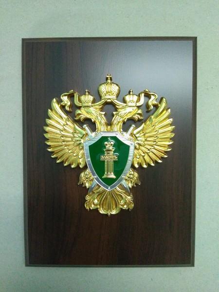 желании эмблема прокуратуры россии фото подход
