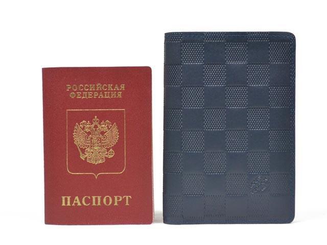 44529d75823f Санкт-Петербург. Обложка на паспорт louis vuitton. Фото 4. Санкт-Петербург.