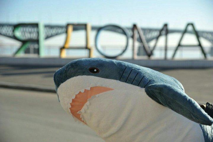 акула из икеа блохэй купить в волгограде цена 3 000 руб дата