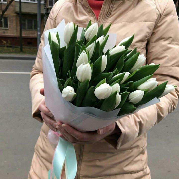 фото тюльпаны краснодар шпона городе