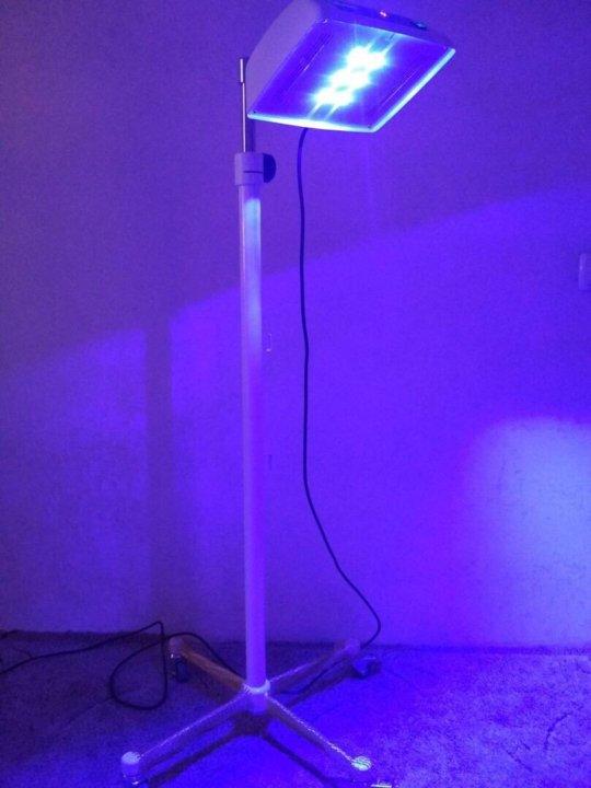 Лампа фототерапии напрокат москва