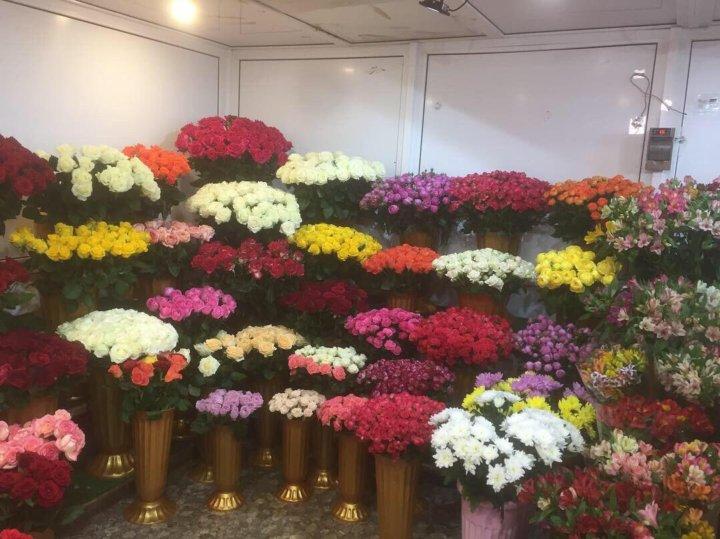 Цветы оптом и в розницу в зао адреса, оптом голландия