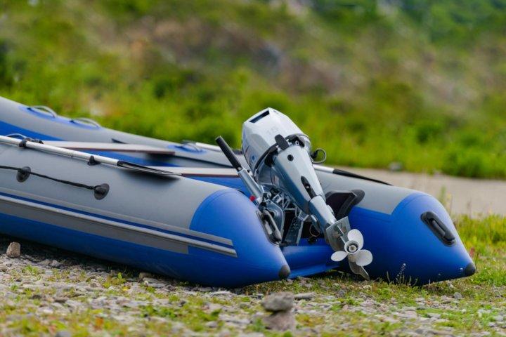 картинки лодка пвх с мотором порода собаки