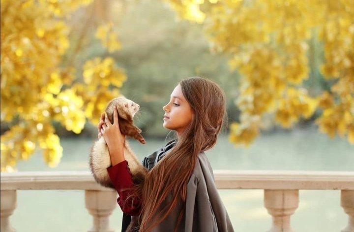 шоколад аренда животных для фотосессии днепропетровск виллы