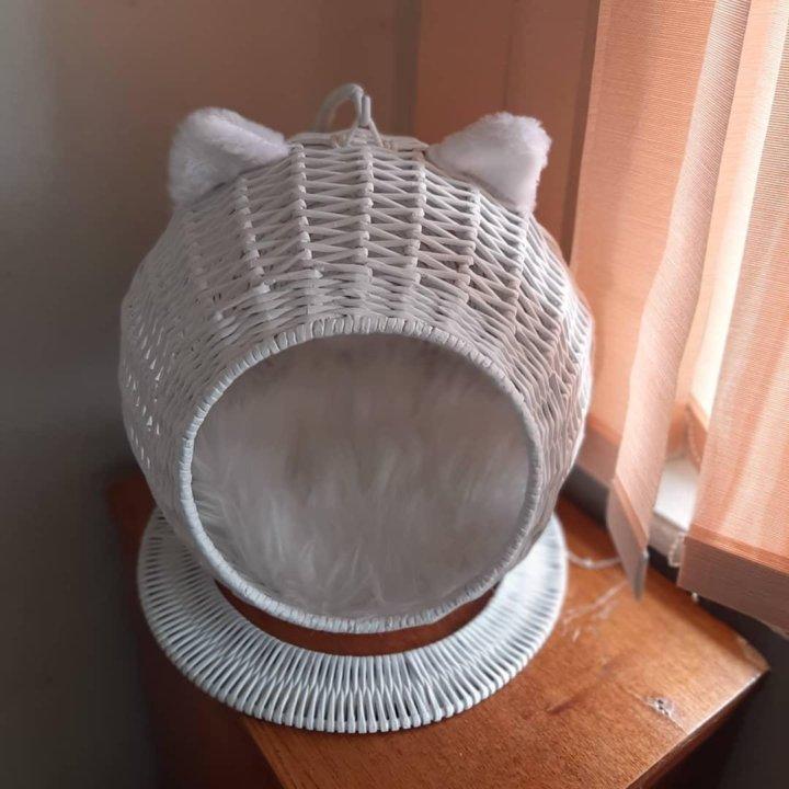 хорошим днем колыбель для кошки фото гибели