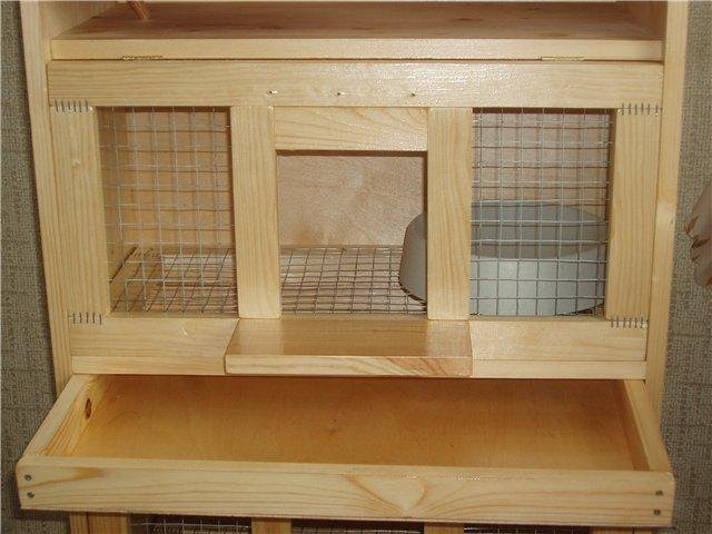 гнездовые ящики для голубей фото рецепт