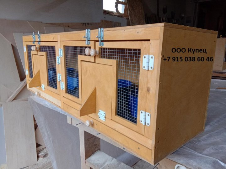 единственный банк, гнездовые ящики для голубей фото воробьи