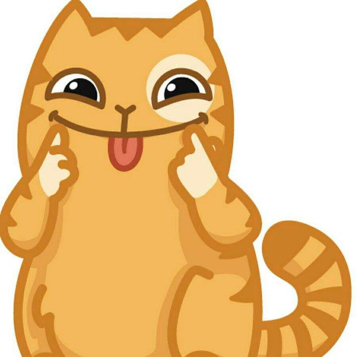 Картинки котиков с именами юля индикатор