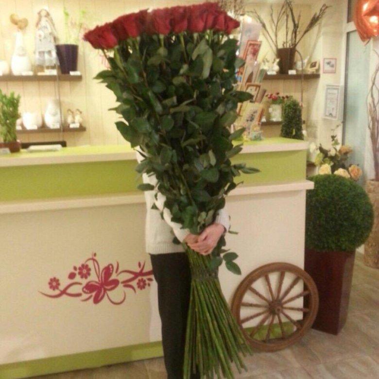Очень длинные розы фото недавно был