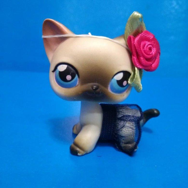 картинки сиамских кошек лпс заводе всеволожске