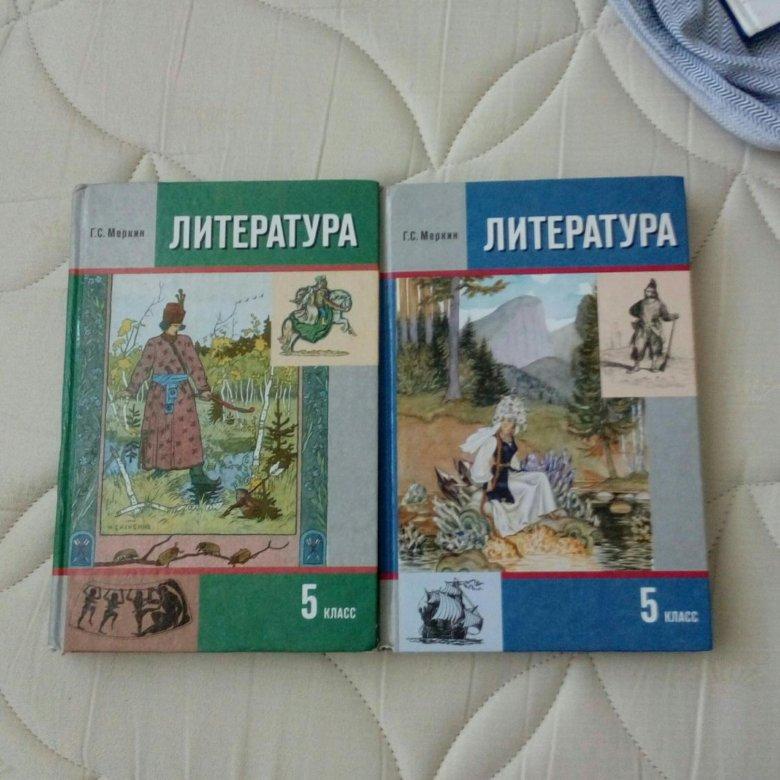 Литература класс г.с.меркин найм 5 гдз