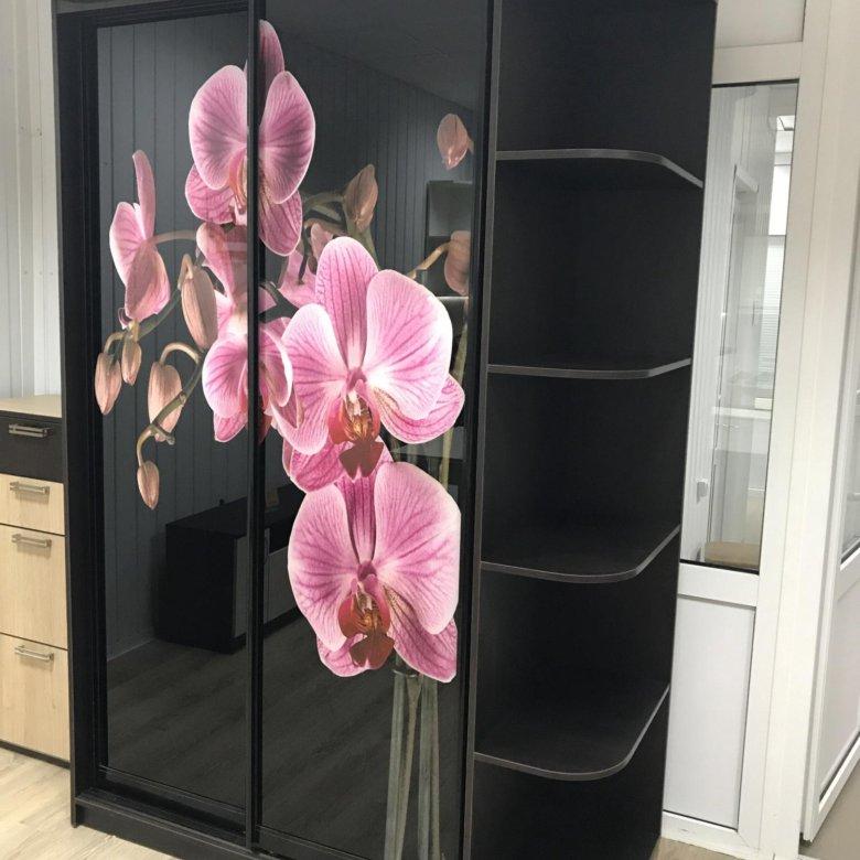 Шкафы купе фото цветок пион