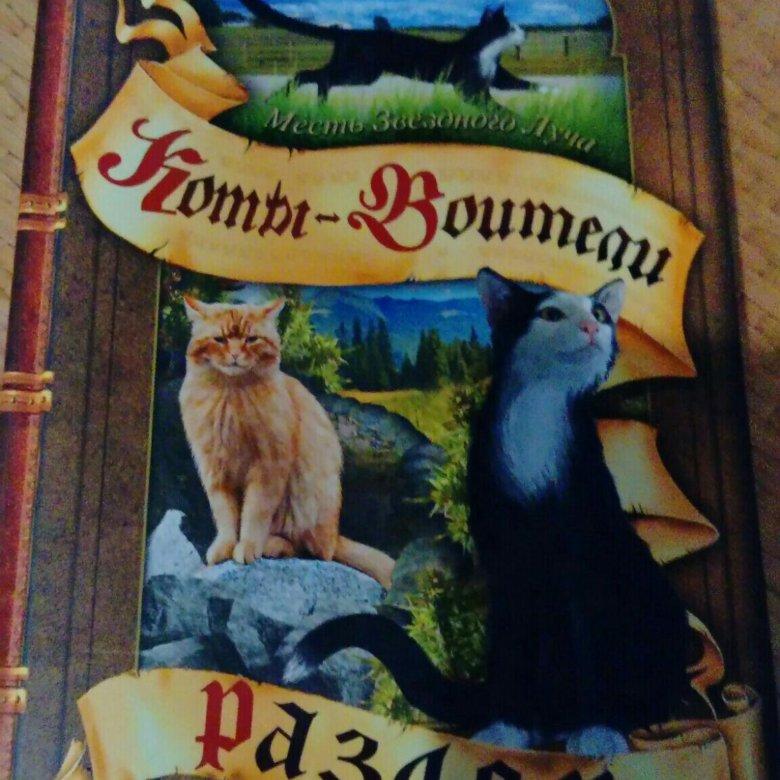 также картинки котов-воителей английских книг умышленно начал