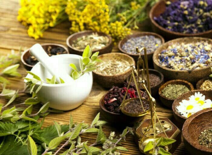 Лечение Травами Похудении. Как похудеть с помощью трав? Травы для похудения сжигающие жир, слабительные, мочегонные, очищающие, снижающие аппетит, ускоряющие метаболизм: диета, чай, отвар, ванны — рецепты