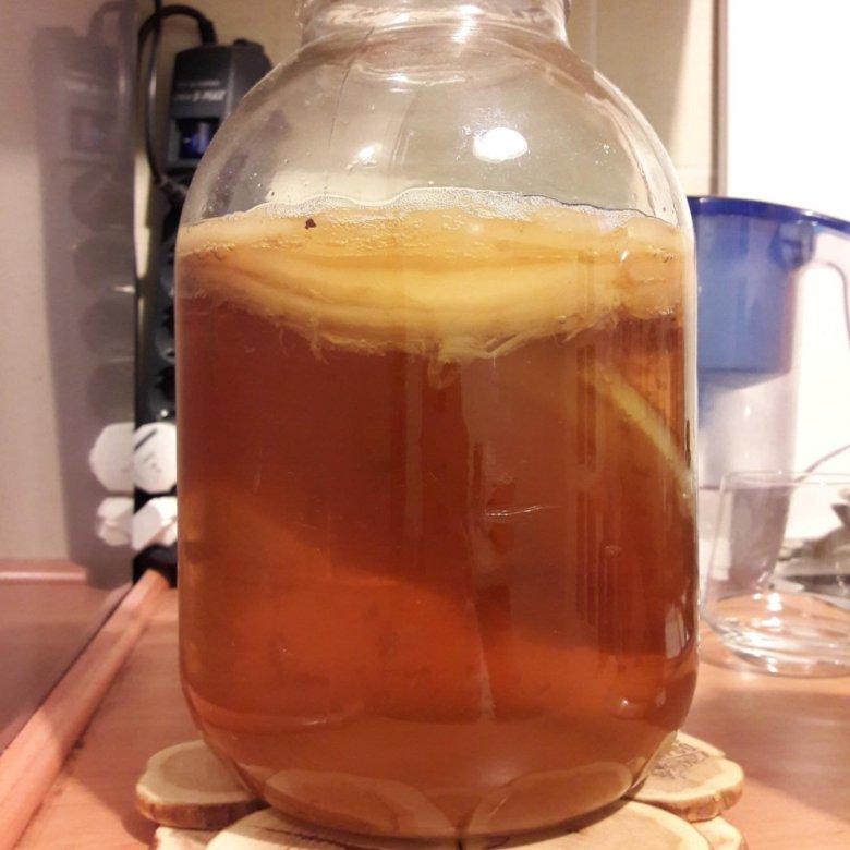 Диета С Чайный Грибом. Как вырастить чайный гриб и правильно использовать для похудения?