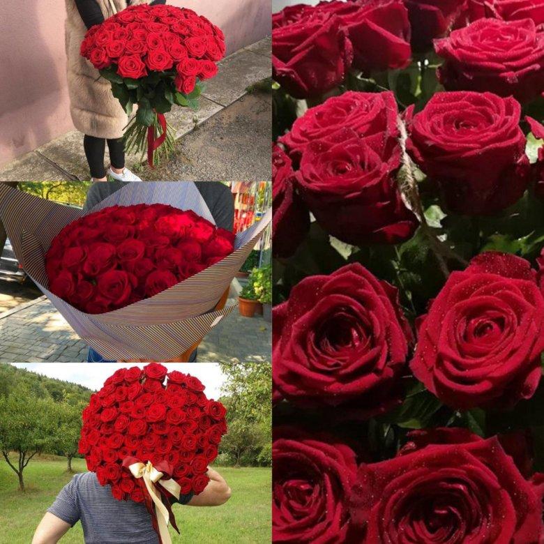 Розы оптом санкт-петербург