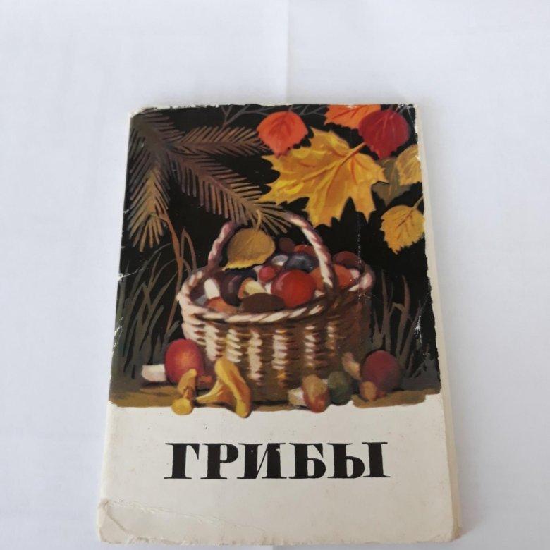 Днем, грибы набор открыток