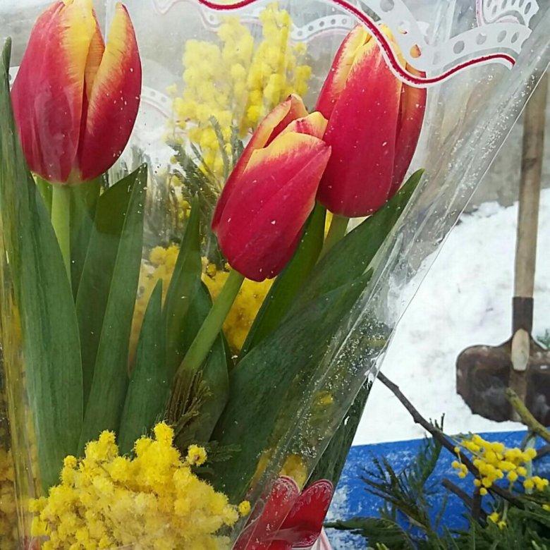Магазин цветов мимоза самара, новой каховке синоптик