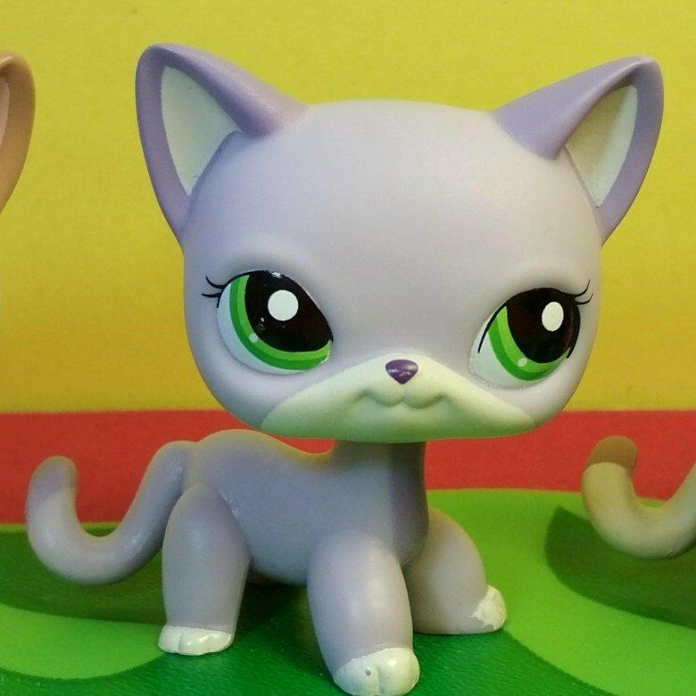 Картинки про, картинки про кошки петы стоячки
