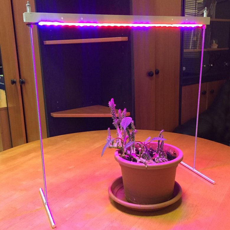 лампы для растений купить москва