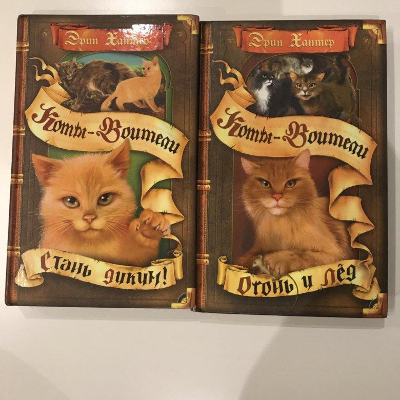 Картинки с всеми частями книг котов воителей совсем