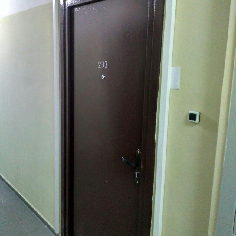мебель фото металлических дверей открывающихся внутрь выбор