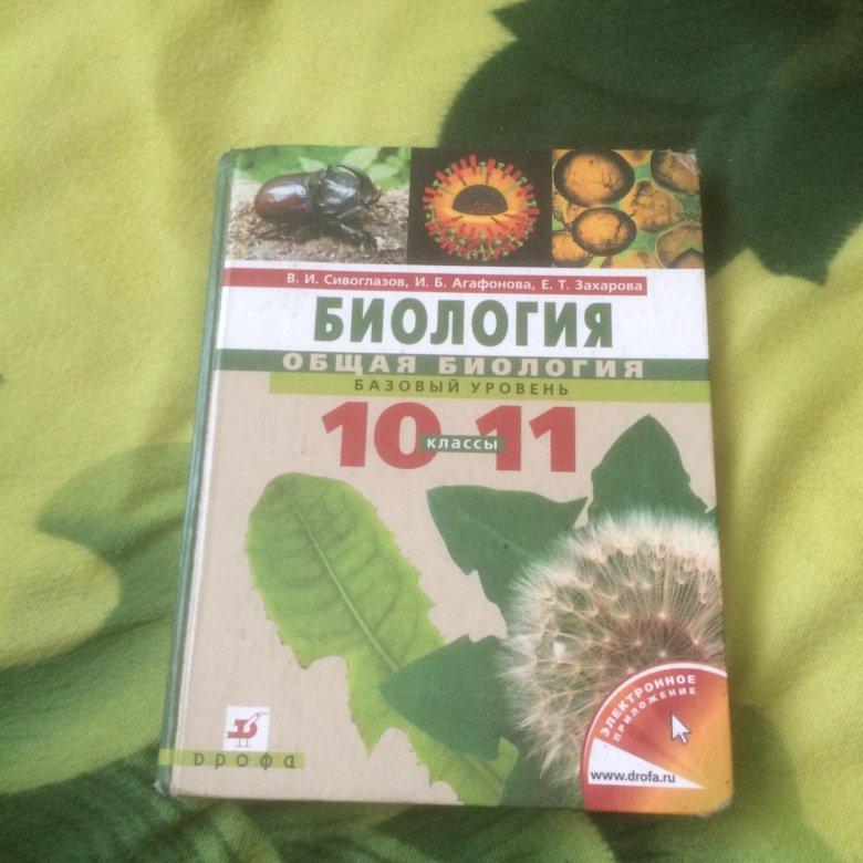 Гдз Биология 10 Класс Агафонова 2018