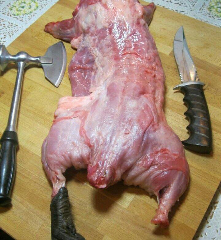 Нутрия мясо картинки