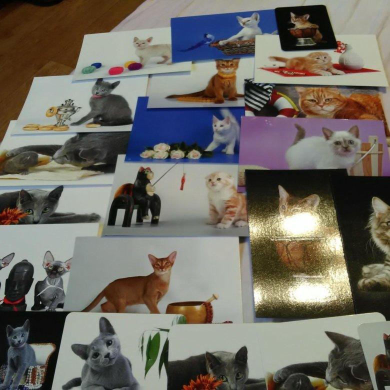 Именинами, авито открытки нижний новгород