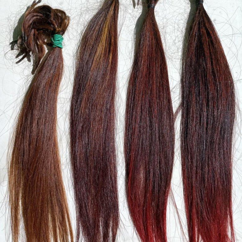 Прически на длинные волосы в парикмахерской фото оргия